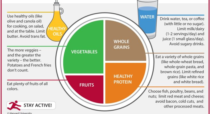 Healthy Eating Plate - Piatto Unico Bilanciato